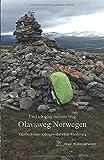 Olavsweg Norwegen: Und ich ging meinen Weg